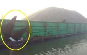 The FRPD 309 sustained damage to the shell plating and forepeak tank forward of the collision bulkhead. In addition, the port anchor was disconnected from its housing and became wedged in the Evco 60's hull