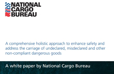 National Cargo Bureau white paper calls for urgent action to prevent serious container incidents
