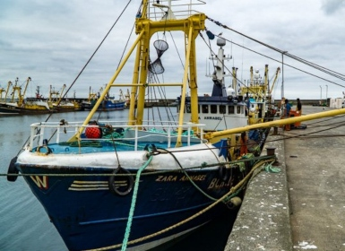 Fishing vessels detained: Zara Annabel (pictured) has been detailed by MCA surveyors