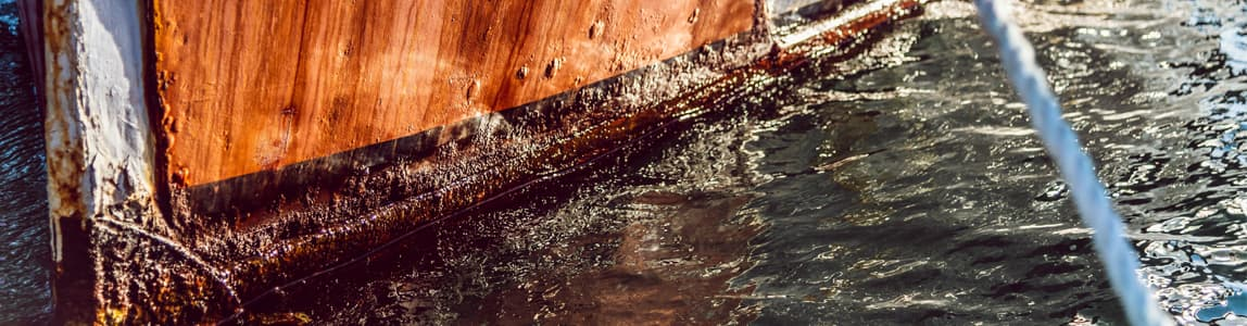 Marine Corrosion distance learning course