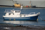 Small utility workboat